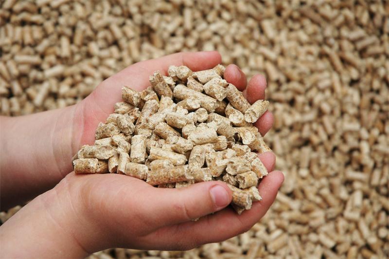Чрезмерные уровни тяжелых металлов обнаружены в азиатских комбикормах