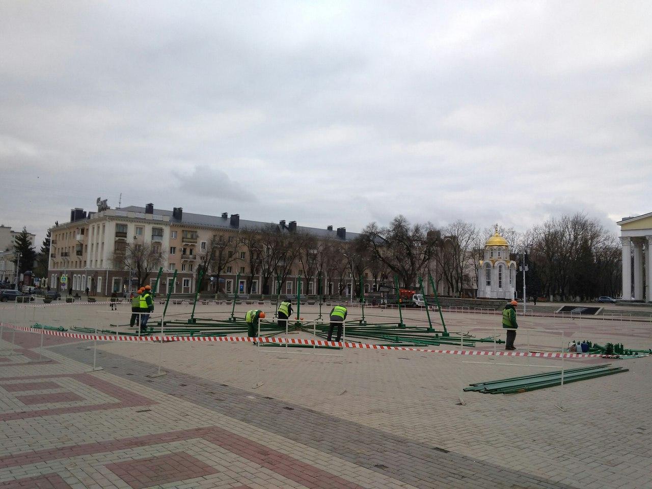 ВБелгороде приступили кустановке новогодней елки
