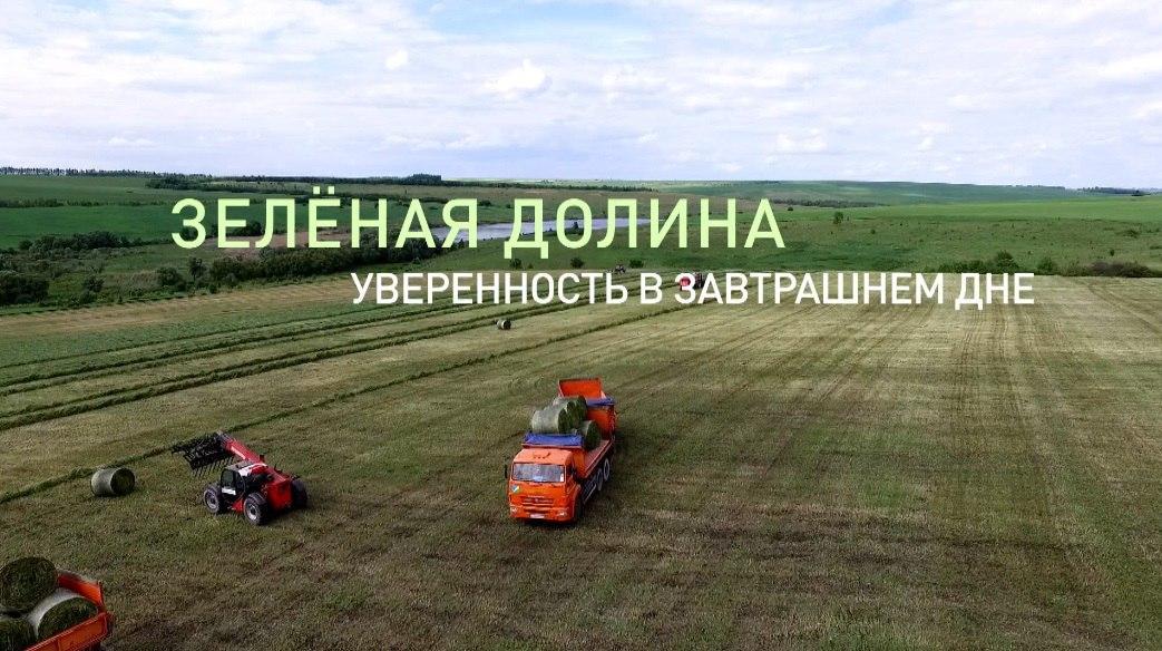 Официальный сайт группы компаний зеленая долина страж страховая компания официальный сайт липецк